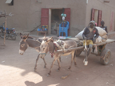 172_Djenne Old Town  Donkey Cart  A Medieval Town