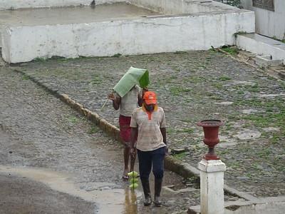 143_Sao Tome Island  Monte Cafe Village and Plantation  A Leaf as a Raincoat