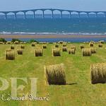006_Confederation Bridge and Rich Rolling Farmland