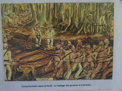 097_Les Bagnes de Cayenne  Camp forestier dans la forêt  Le hallage des grumes à la bricole