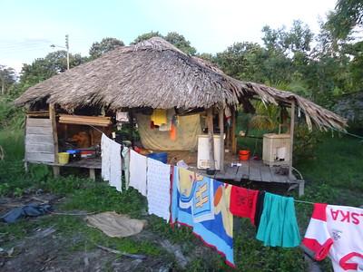 150_Orinoco Delta  The Warrao-Indians  Community life, grand-parents, parents (10-14 children)