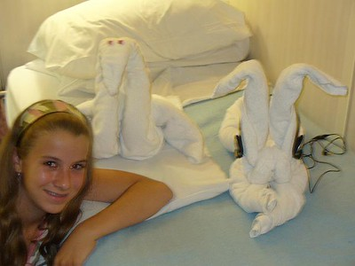 303_Cruise_Towel_Animals